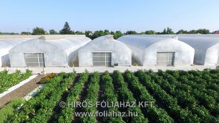 Kísérleti növényházak Szentesen